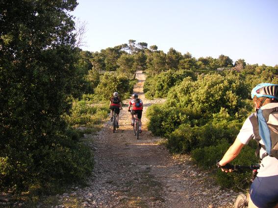 fall-biking-near-arvada